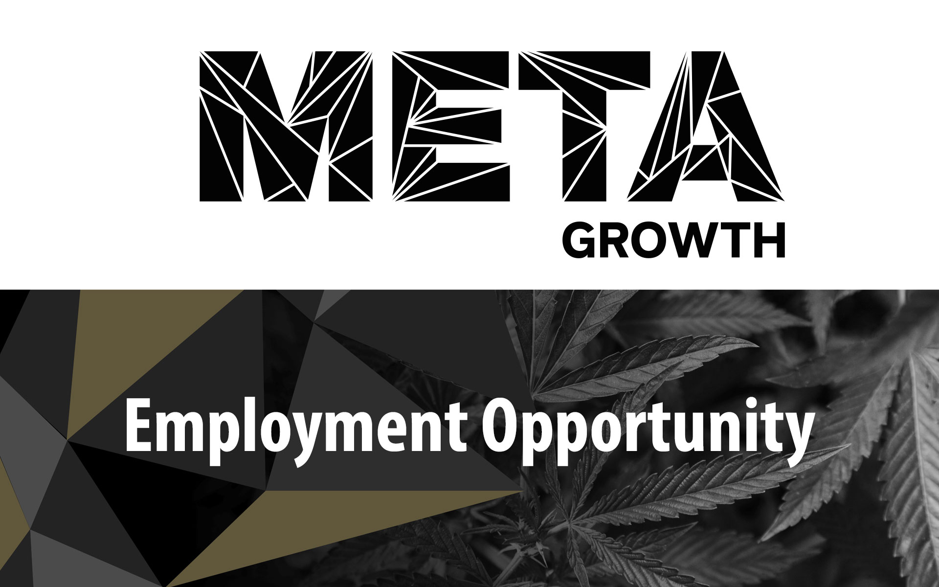 Meta Growth Cannabis Supply Hiring Assistant Store Manager