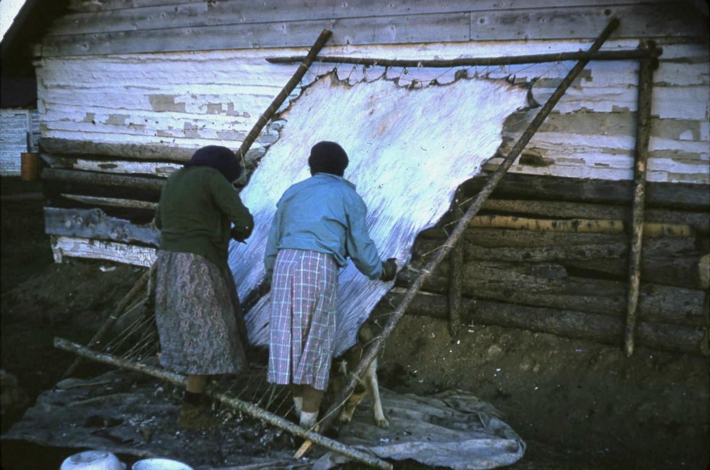 Preparing a Hide historical photo